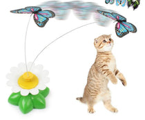 Toy For Cats Interactive Bird & Butterfly Electric Funny Pet Toys - TcMarketShop
