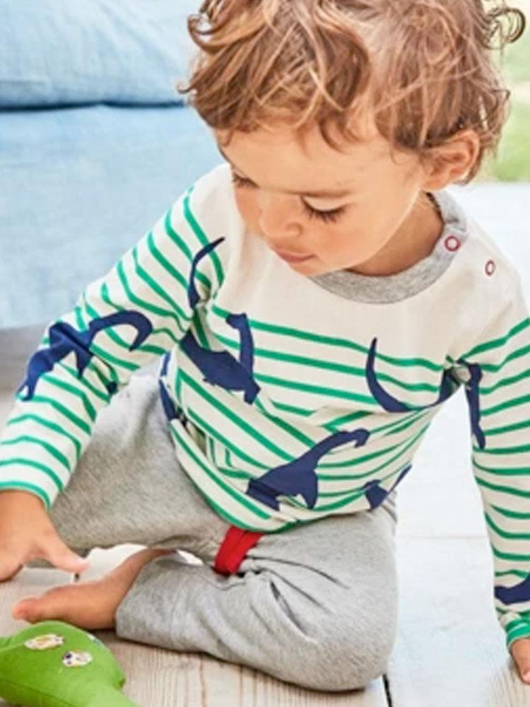 Dinosaur Twist - Striped Top with Grey Leggings Boys Dinosaur Outfit - Stylemykid.com