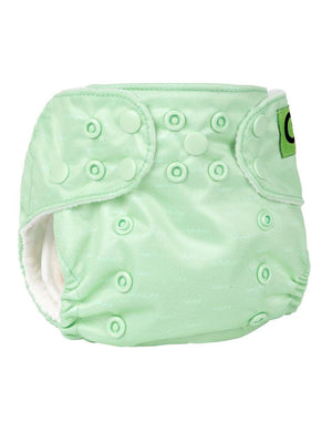Zoocchini - Washable Reusable Cloth Pocket Nappy with 2 Inserts - Henrietta the  Hedgehog - Stylemykid.com