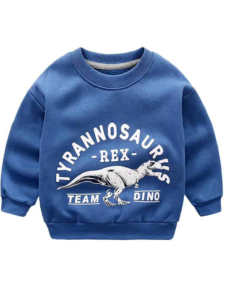 Tyrannosaurus Rex Team Dino - Steel Blue Boys/ Girls Sweatshirt - Stylemykid.com