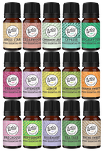 Essential Oils - Single Note 10ml Bottles