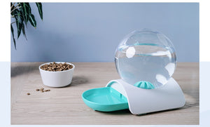 Water Feeder Bowl for Cats & Dogs - Zorbba