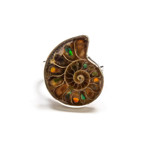 SS Adjustable Ammolite Ring