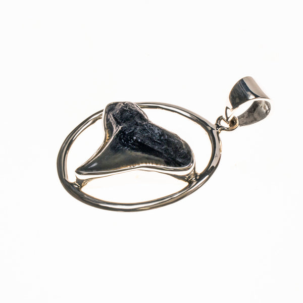 Sterling Silver Set Shark Tooth Pendant