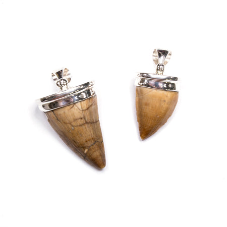 SS Art Nouveau Fossilized Palm Wood & Walrus Tusk, Citrine & Lemon Quartz Pin/Pendant