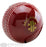 Gray Nicolls Batting Master Cricket Ball_10804