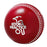 Kookaburra Practice 142G Cricket Ball - Red