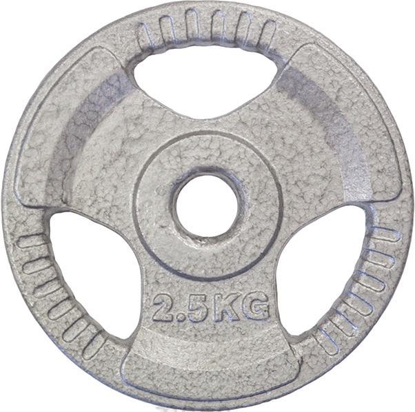 HCE Hammertone 2.5kg Weight Plate_PS-1025-CI
