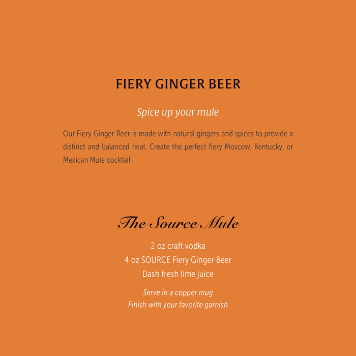 Llanllyr Source Fiery Ginger Beer 4 x 4 200ml- Set of 16