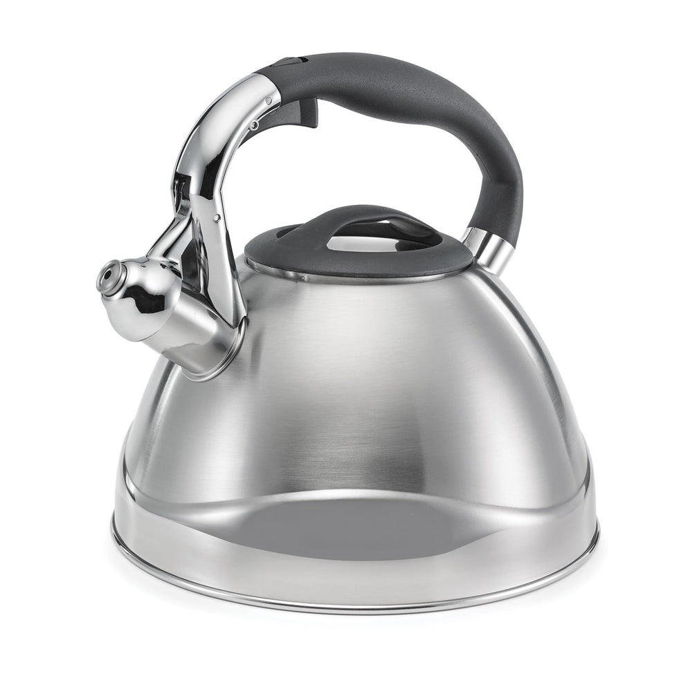 2.6qt Brushed Retro Large Tea Kettle