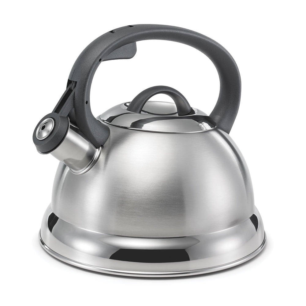 2.4qt Brushed Retro Medium Tea Kettle