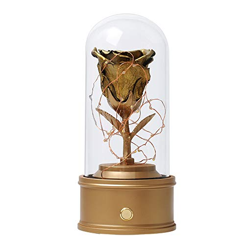 ANLUNOB Handmade Preserved Real Rose Eternal Rose Led Fairy lamp in Glass Dome Gift for Her Thanksgiving Christmas Valentine's Day Birthday Mother's Day