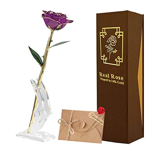 TECHSHARE 24K Gold Rose Red, Real Rose Long Stem Love Forever Flower with Beautiful Porcelain Vase Unique Anniversary for Her Women Girlfriend Valentine Day Thanksgiving Best Wedding Birthday