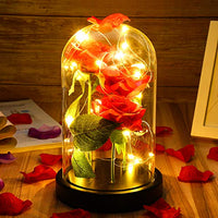 Tiaronics Beauty and The Beast Rose, Red Silk Rose in Glass Dome with Gift Package Best Gifts for Her, Anniversary, Wedding, (Red Silk Rose with Black Base)