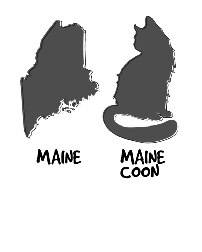 Maine vs Maine Coon T-Shirt