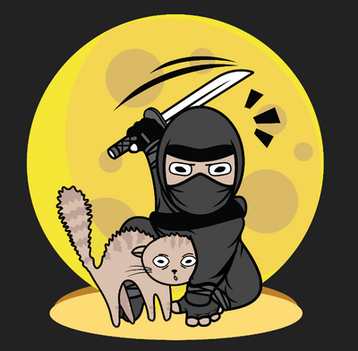 Ninja Defending Cat T-Shirt