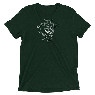 Got a Lot of Felines For You T-Shirt