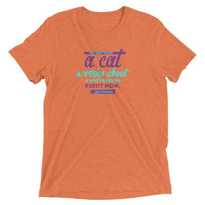 Cats Live For Now T-Shirt