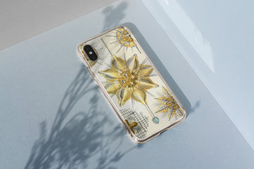 Protozoa - iPhone Case