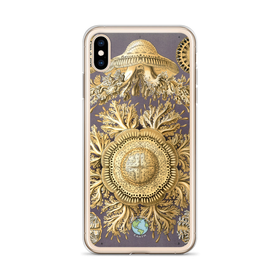 Jellyfish - iPhone Case