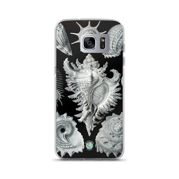 Sea Shells Samsung Case