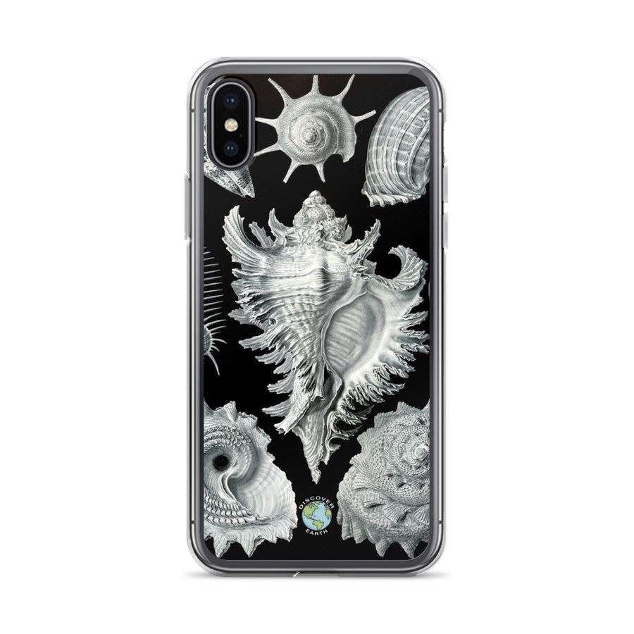 Sea Shells - iPhone Case