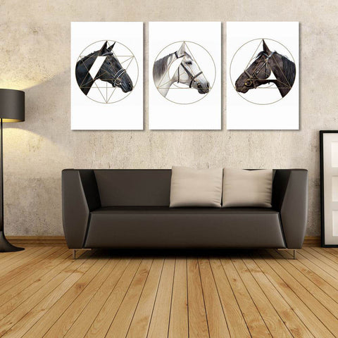 Elegant Modern Living Room 3 Panel Canvas  Horse Wall Art