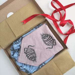 Christmas Gift Set - Bibs and Bloomers