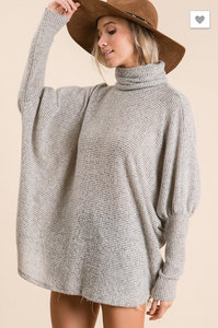 Long Sleeve Turtle Neck Boxy Top