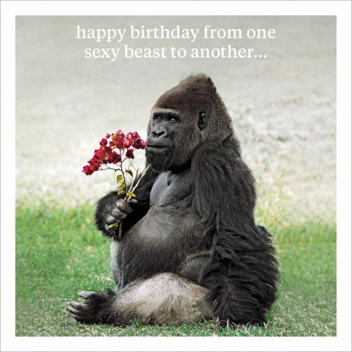 Happy Birthday From One Sexy Beast To Another Greeting Card