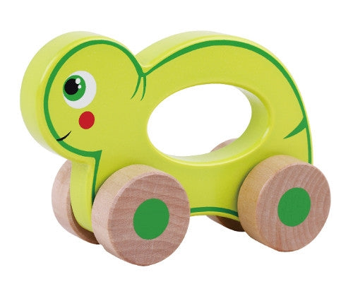 Push Along Friends Turtle Children's Toys