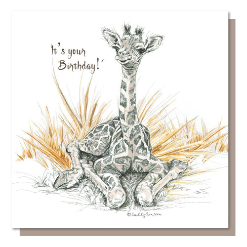 It's your birthday Baby Giraffe greetings card - birthday - blank inside