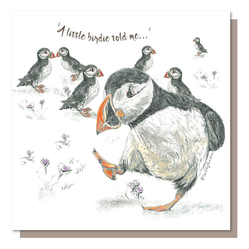 Puffins A little birdie told me Greetings Card Blank inside.