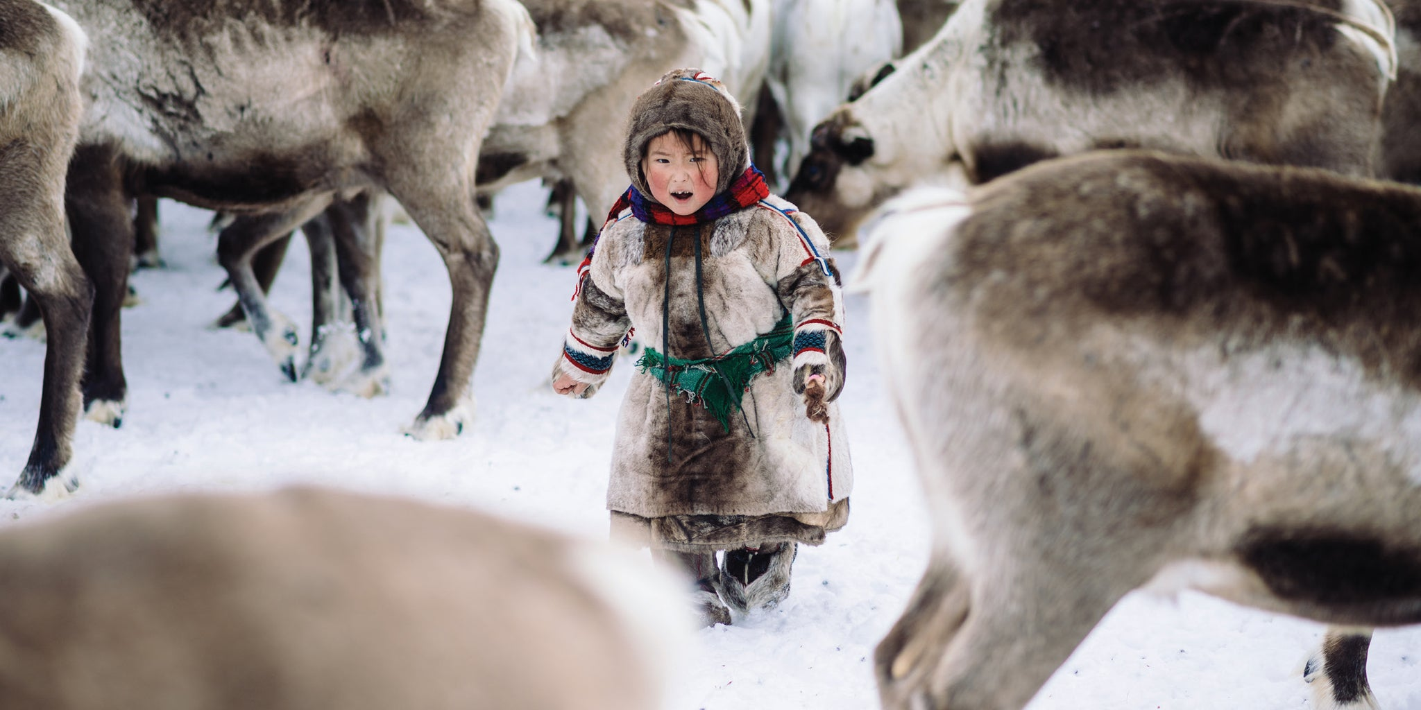 NEW: Nenets girl with reindeer cards