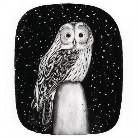 NEW: Tawny owl cards