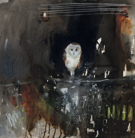 Barn owl cards by Kurt Jackson