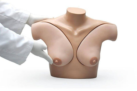 Gaumard Breast Self-Examination Simulator - Shop | LivCor Australia