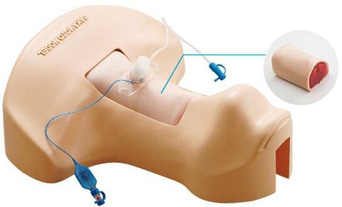 Tracheotomy Trainer - Shop | LivCor Australia