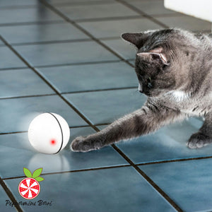 FurrBall - The Interactive Activated Pet Ball