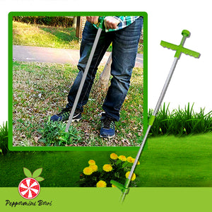 Stand-up Root Removal Weeder