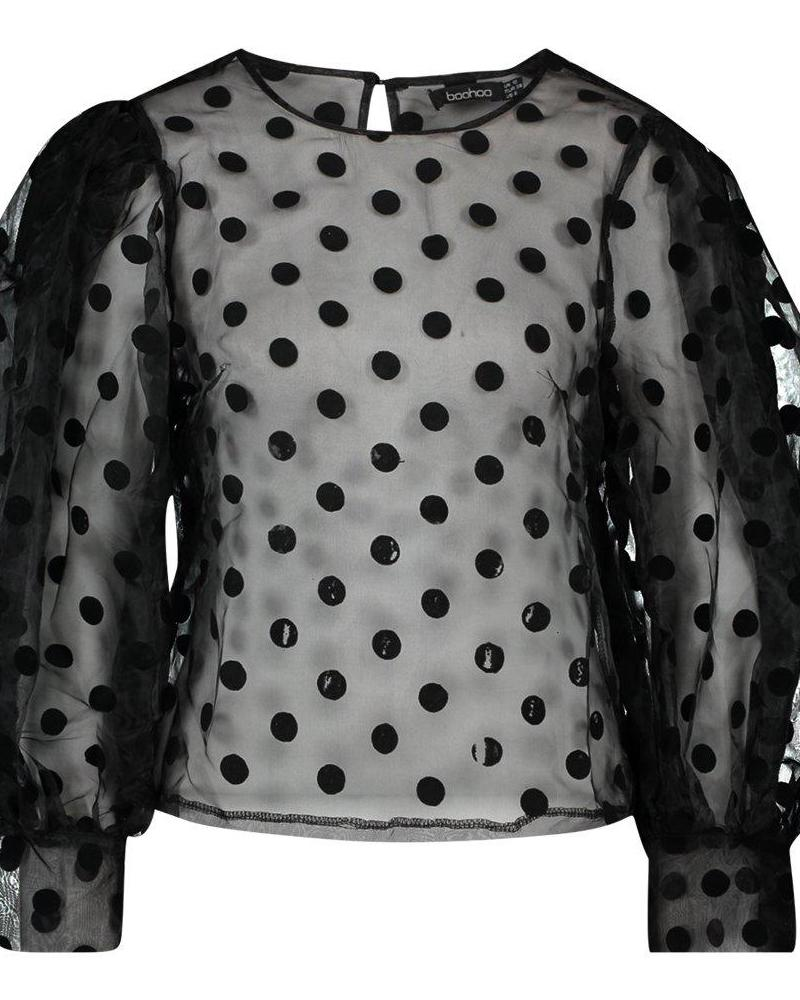 Semi Sheer Mesh Dot Casual Blouse