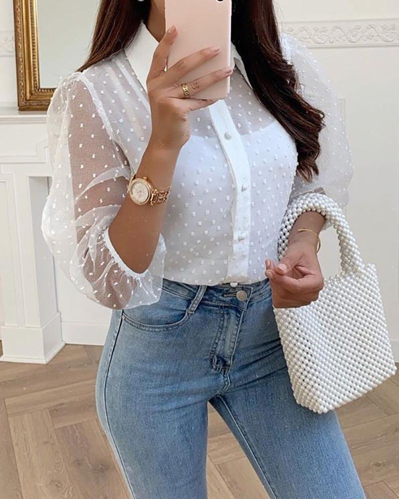 Sheer Mesh Sleeve Swiss Dot Casual Blouse