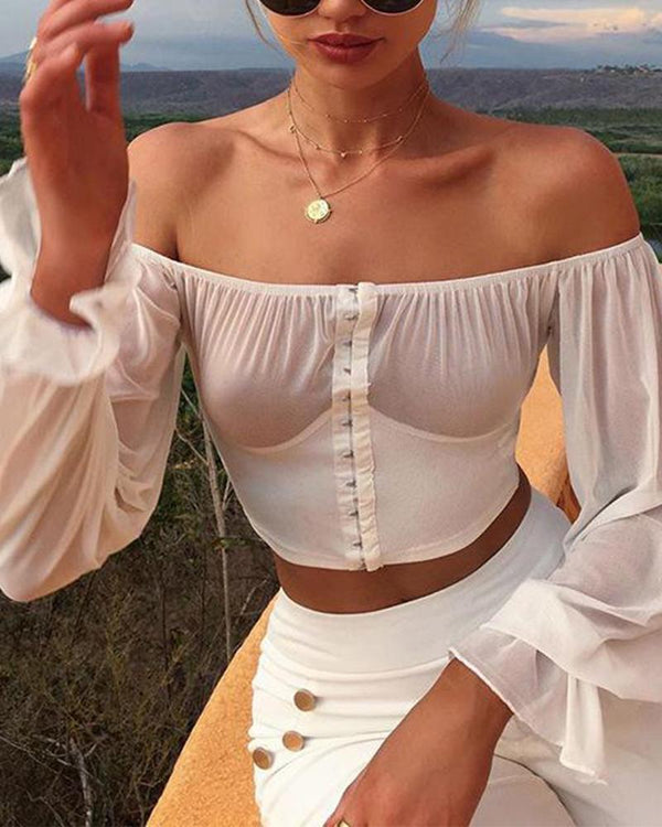Sexy Off Shoulder Mesh Top
