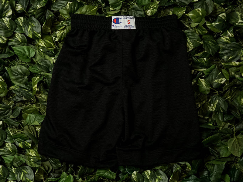 Men's Champion EU Mesh Script Logo Shorts [213054-001]