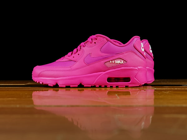 Kid's Nike Air Max 90 GS [833376-603]