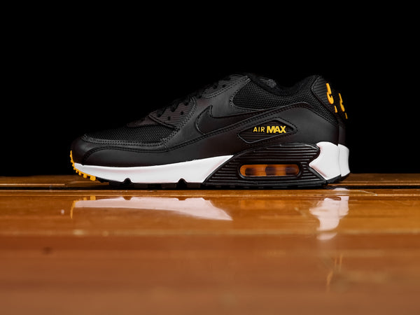 Men's Nike Air Max 90 [AJ1285-022]
