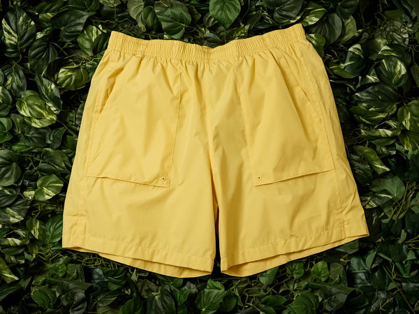 Men's Nike SB Skate Shorts [AT3090-251]