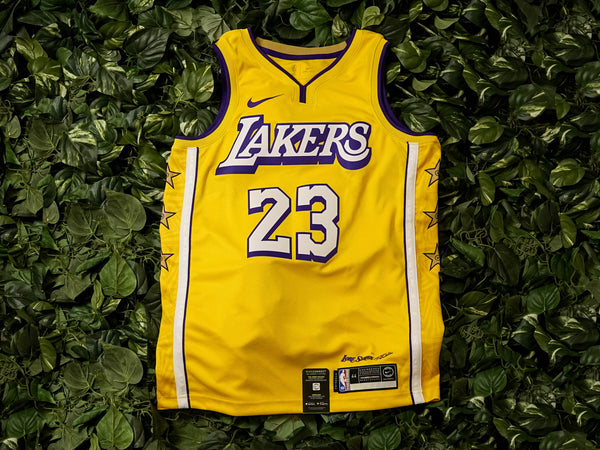 Nike NBA Swingman Lakers Jersey [AV4646-729]