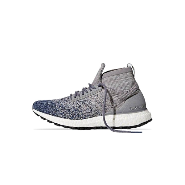 Adidas Ultraboost All Terrain ATR [BB6128]