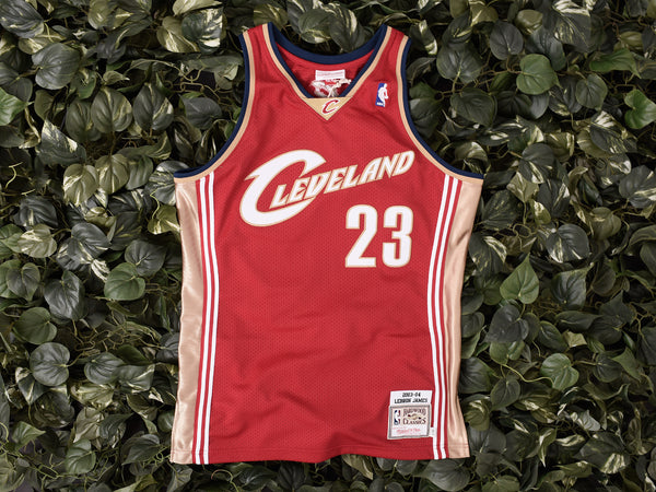 Mitchell & Ness 'James' NBA Authentic Jersey [7226A-327]